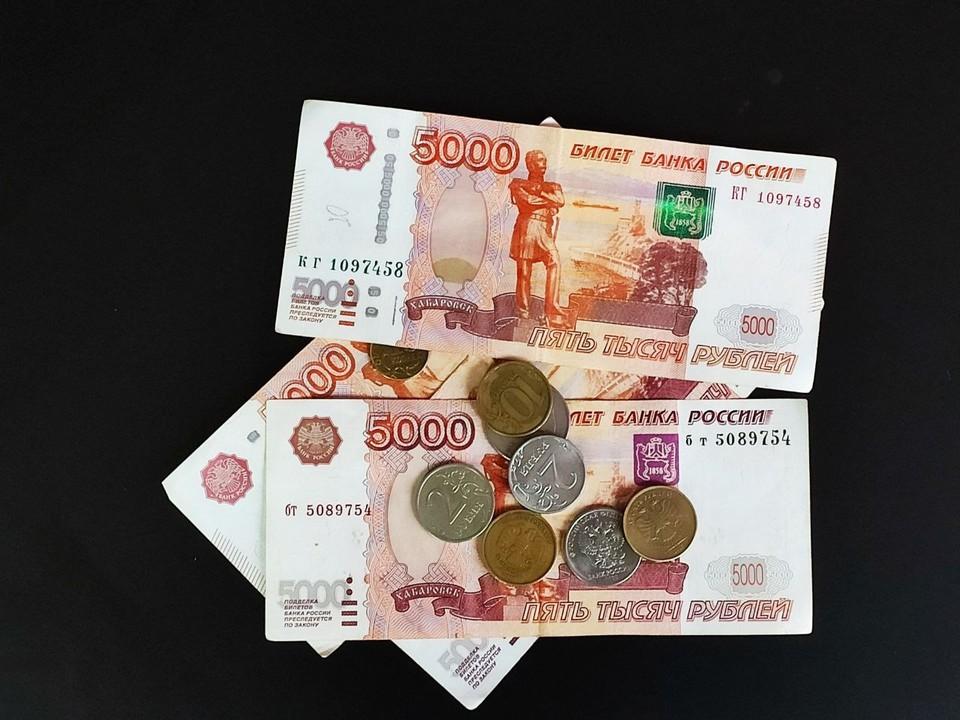 Деньги направят на лечение детей, поддержат многодетные семьи