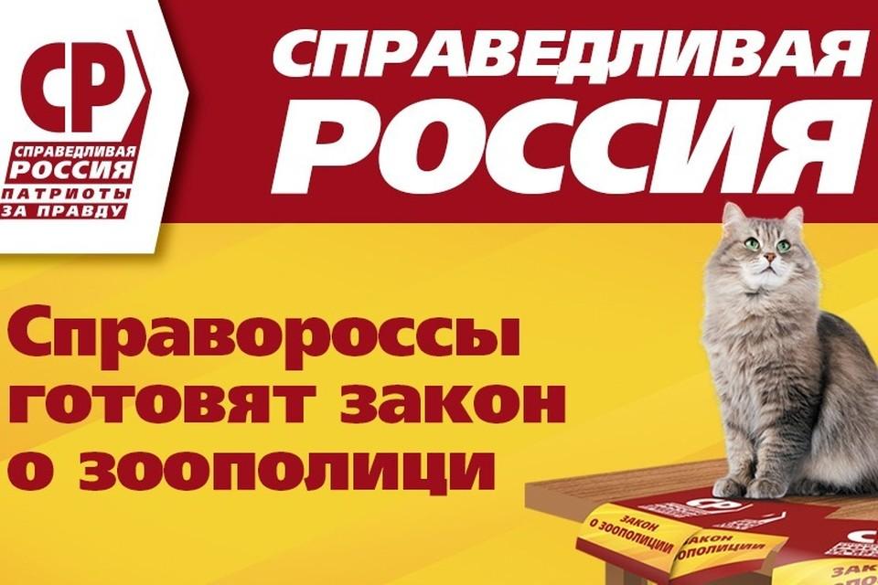Фото: Справедливая Россия.