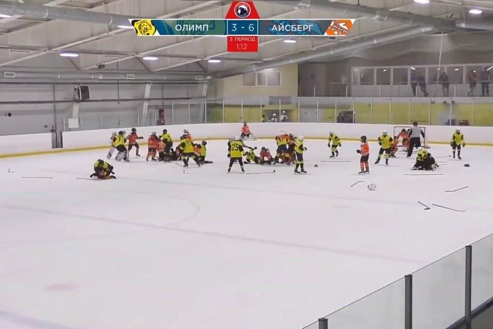 Массовая драка хоккеистов в Саратове. Скриншот из видео