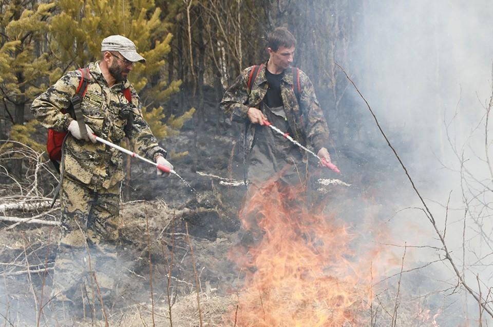 Всего с начала года ликвидированы 520 пожаров общей площадью 23570,94 Га. Из них 413 возникли из-за действия местного населения.