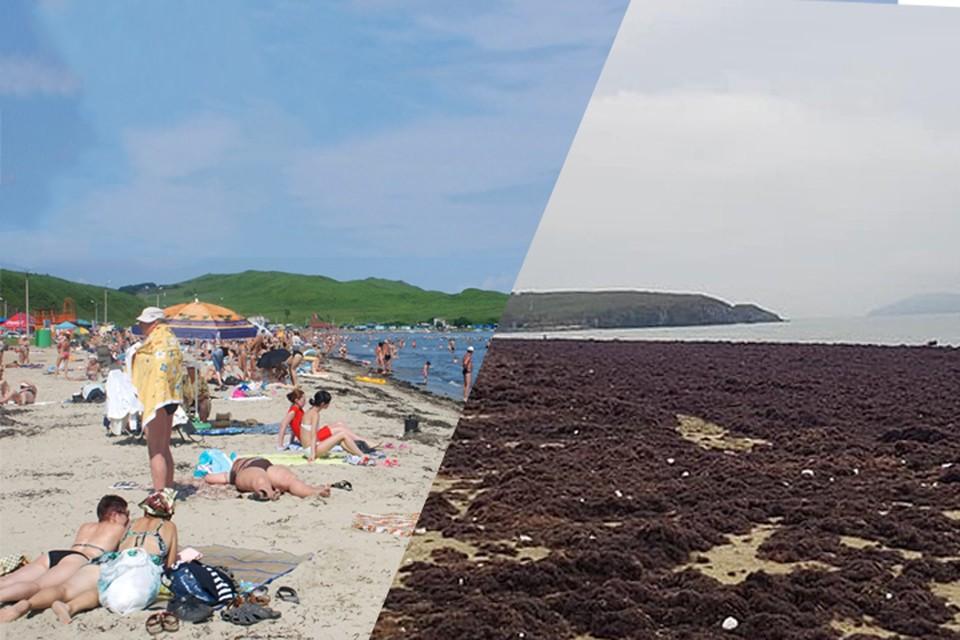 Пляж Маньчжурка в обычное лето (слева) и сейчас. Фото: Сергей Баланов/Игорь Толстяков