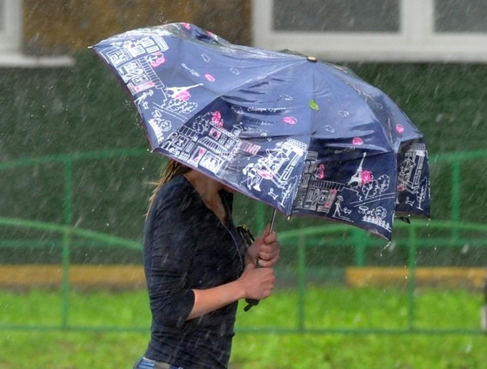 В Прикамье возможны грозы и сильные порывы ветра.