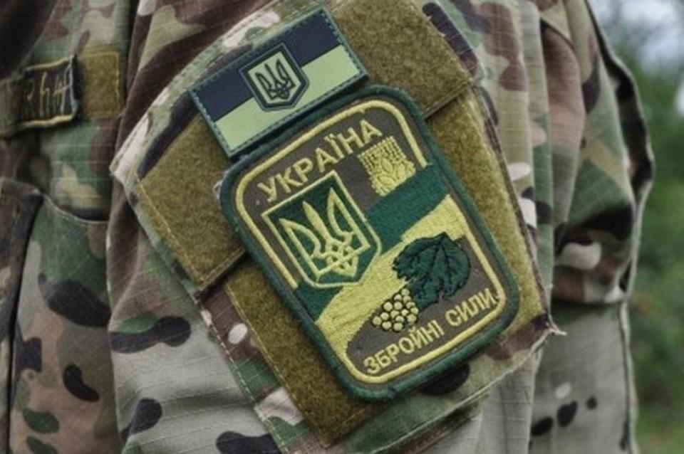 СБУ изъяла оружие и боеприпасы из тайников украинских боевиков у Счастья. Фото: штаб ООС