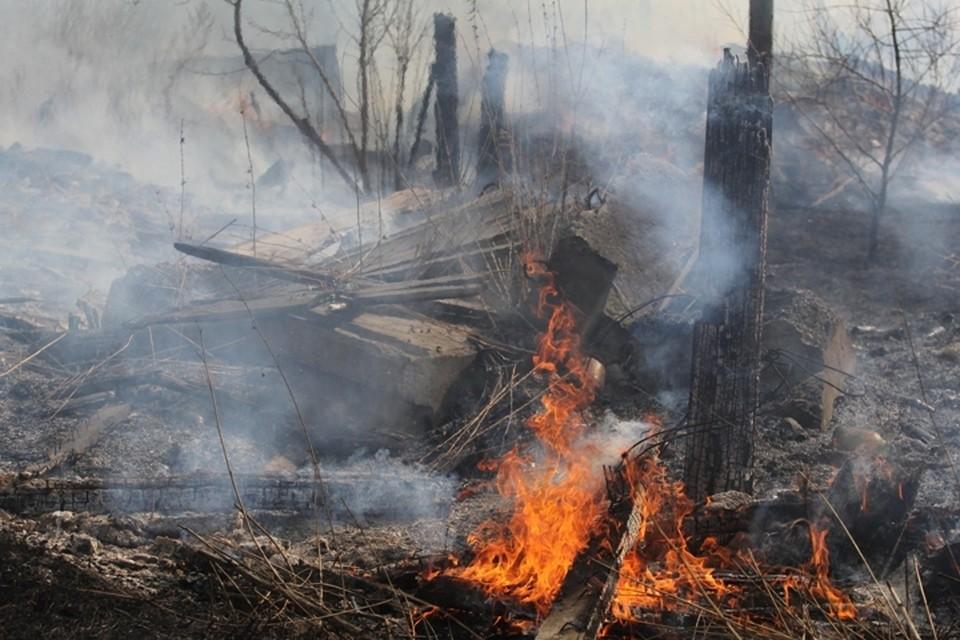 Лесной пожар в 5 км от поселка Мамакан локализован на площади 78 гектаров в Иркутской области