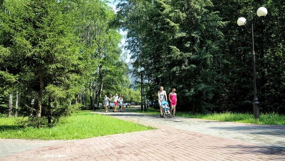 За окном сейчас +17, солнечно. Днем также ожидается погода без осадков, будет довольно жарко. Ухудшение погодных условий синоптики прогнозируют с четверга: похолодает, пройдут дожди. Фото Валерия Доронина, пресс-служба администрации Томска.