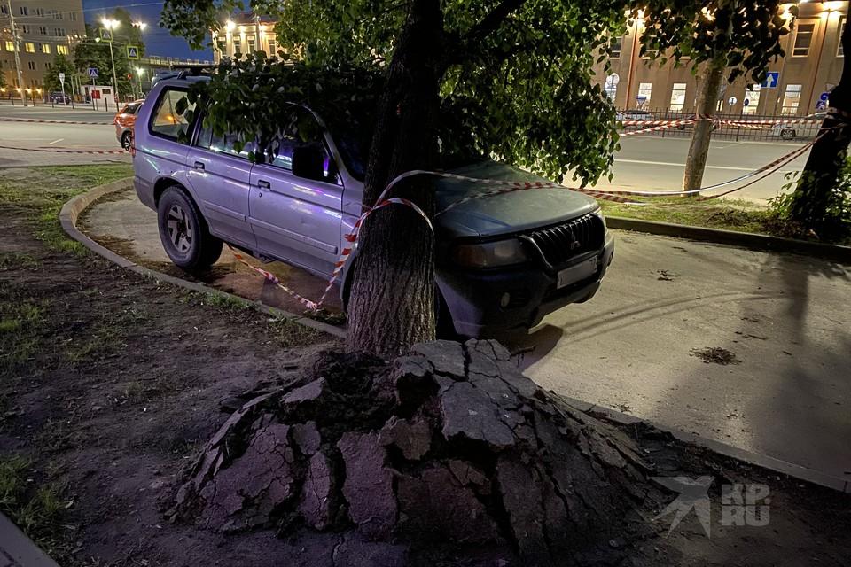 У вокзала Рязань-1 вырванное с корнем дерево рухнуло на иномарку.