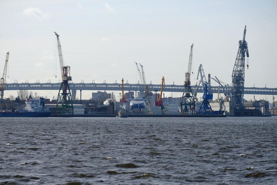 Перевалку морских грузов хотят вывести из Петербурга в Ленобласть.