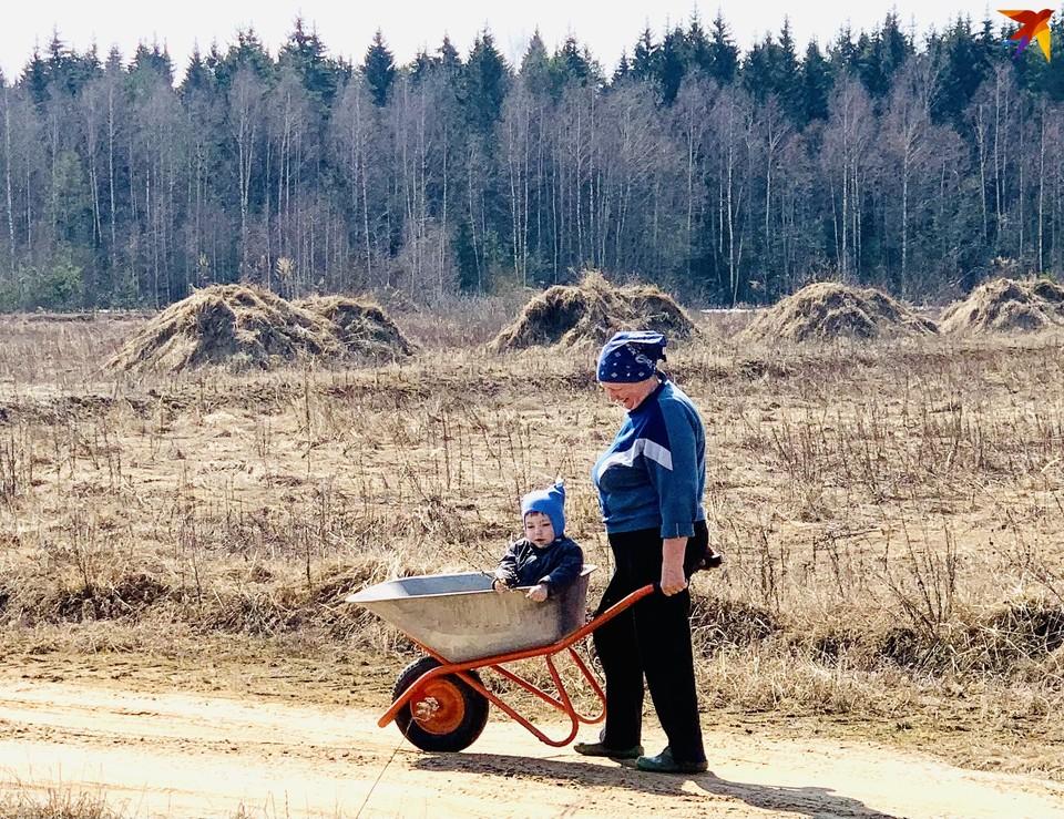 В Торжокском районе из за высокого риска возникновения пожаров запрещён вход в леса.