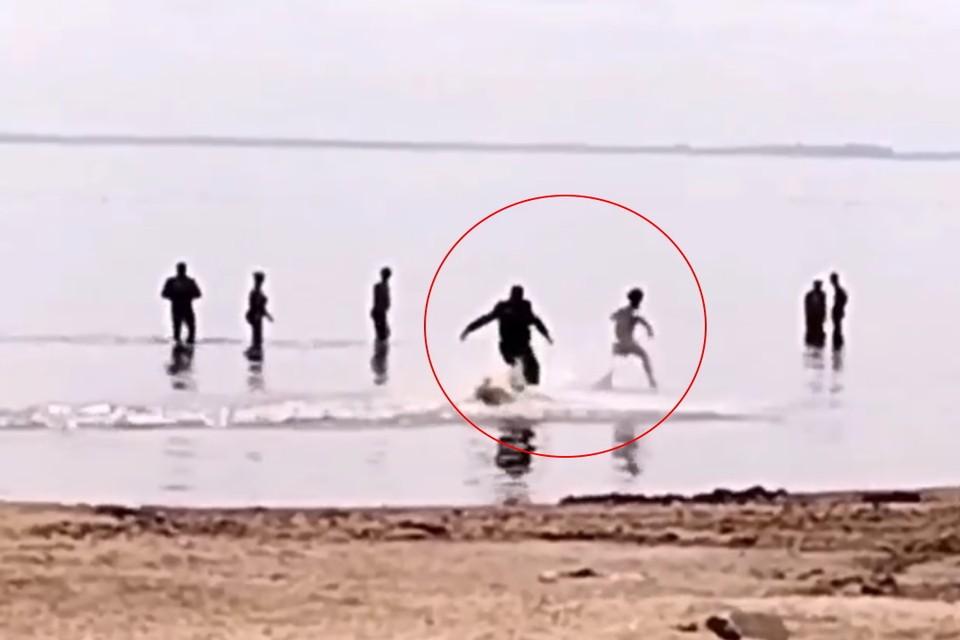 В Петербурге полиция гонялась за нудистом на пляже. Фото: vk.com/spb_today_unreleased