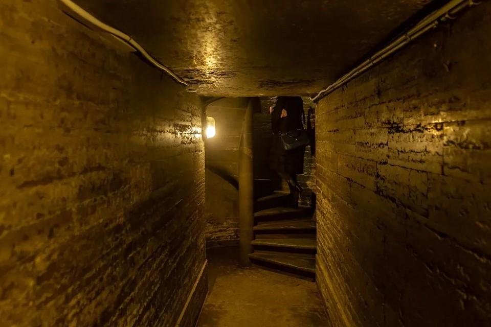 В Петербурге мать оставила без присмотров детей в подвале дома на Рижском проспекте.