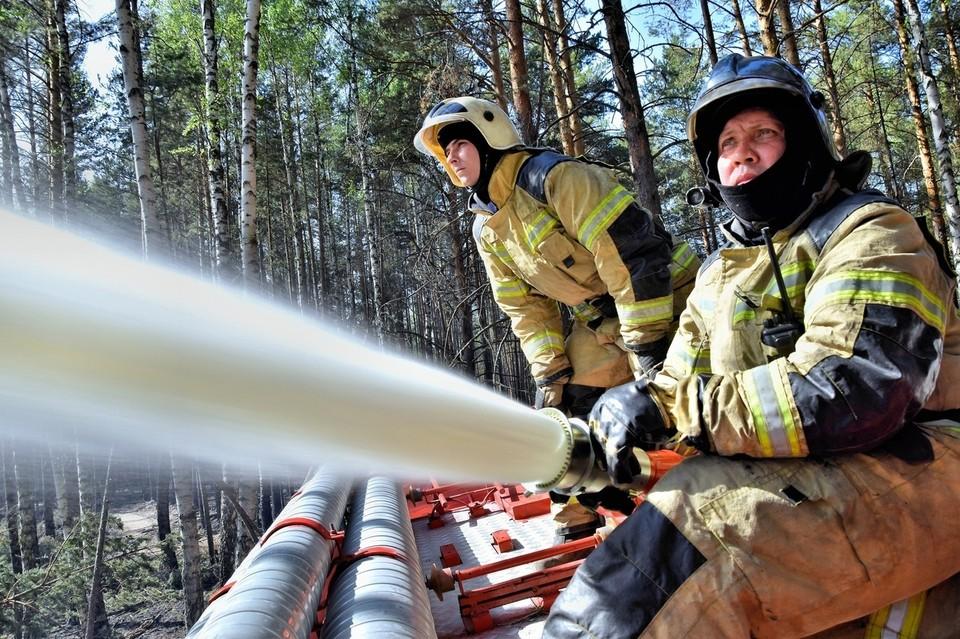 В Тюменской области за прошедшую неделю произошло почти триста пожаров.