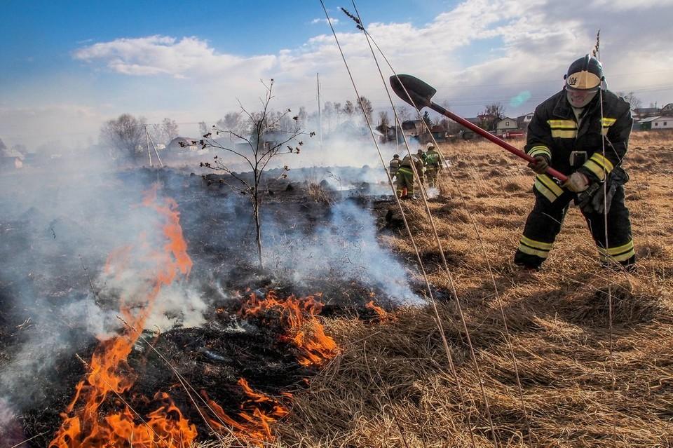 В Тульской области снят особый противопожарный режим