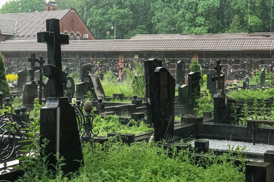 Олег Шелягов решил «похоронить» чёрных агентов Нижнего Новгорода