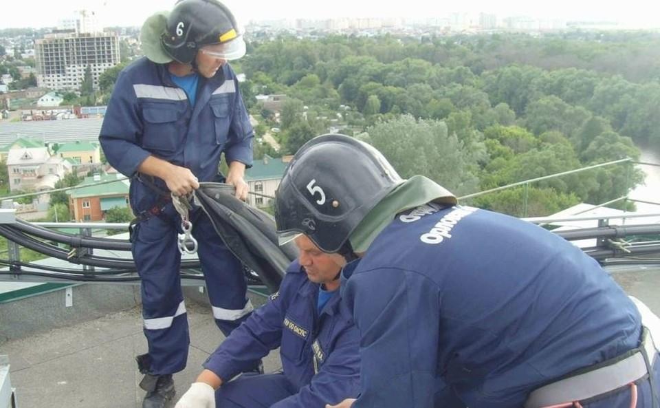 Спасатели помогли животным, попавшим в беду
