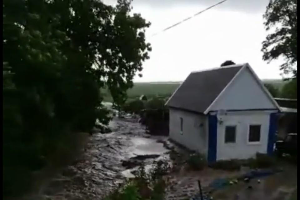 Скрин видео: t.me/kanevrep
