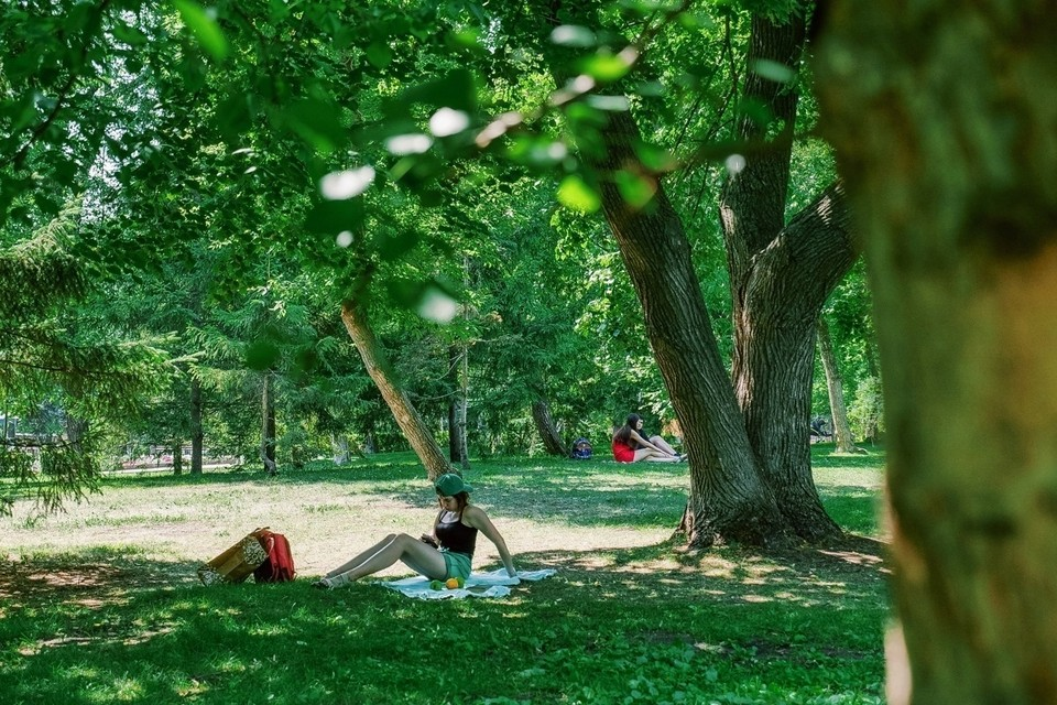 В Загородном парке можно спокойно устроить пикник