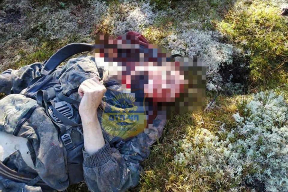 На одной фотографии - тело мужчины без головы, на второй - убитого медведя, который перед смертью задрал охотника. Фото: Мурманск ДТП ЧП / vk.com/murmansk_dtp