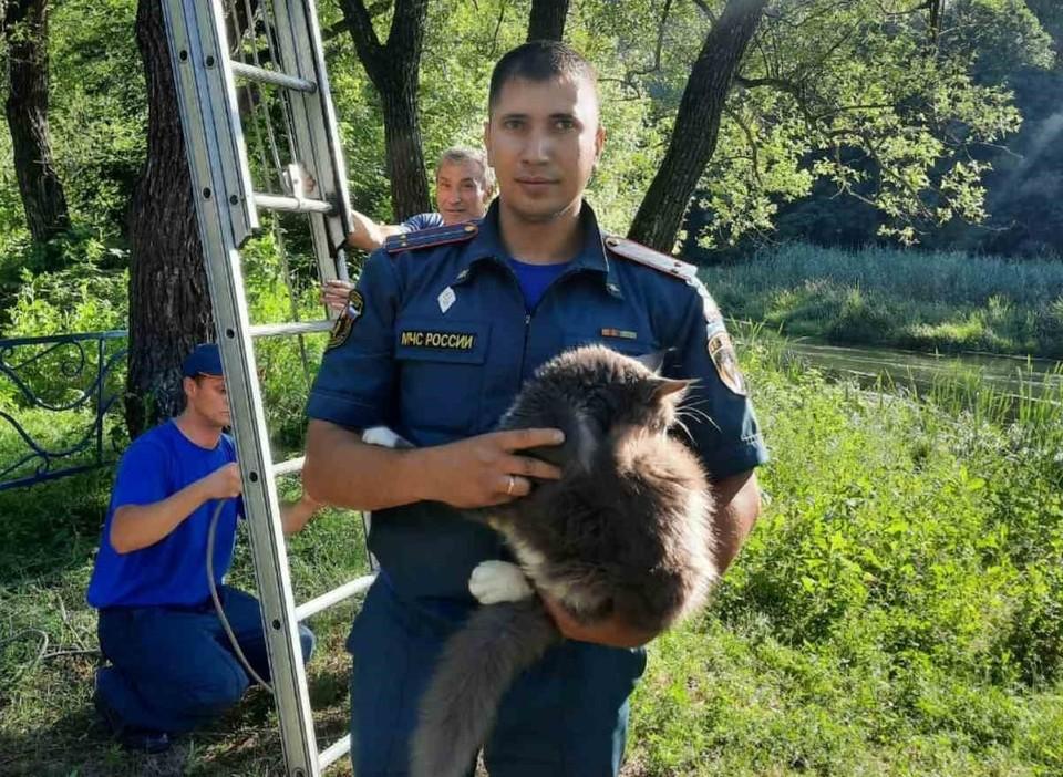 Спасенного кота пожарные передали в руки благодарному хозяину.