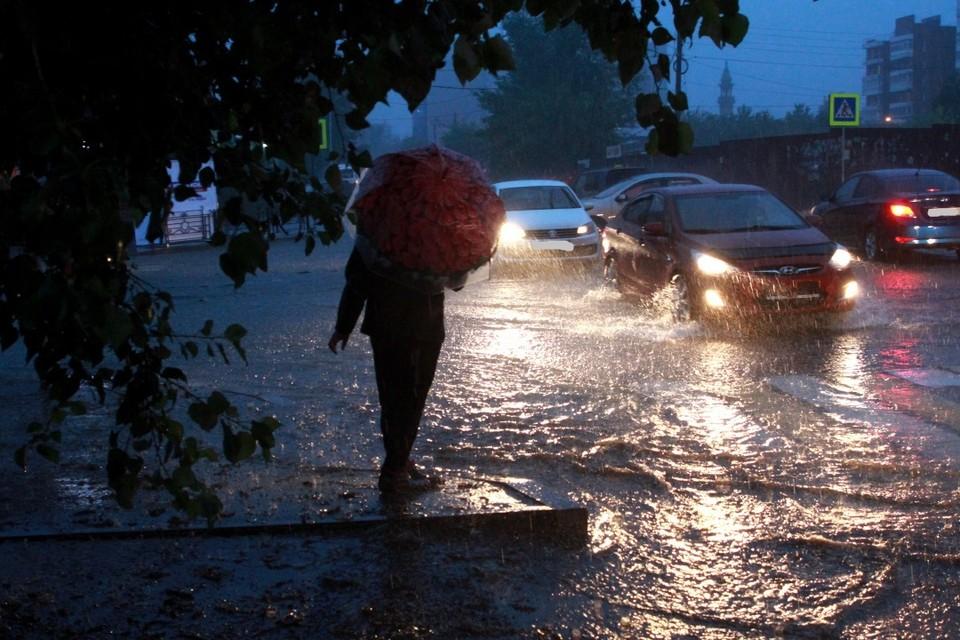 Ливень в Иркутске повалил деревья и вызвал отключения электричества 8 июля