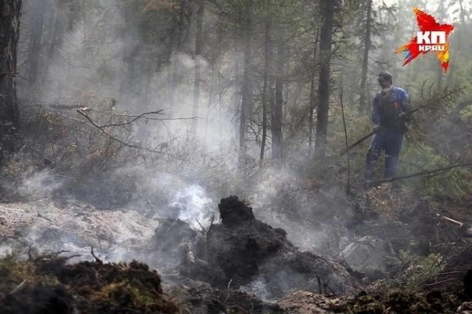 В Белорецком районе горит лес