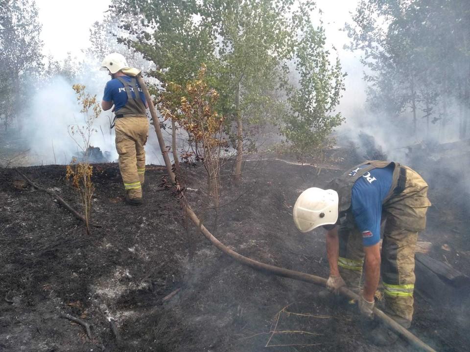В Тольятти продолжают тушить лес. Фото: ГУ МЧС РФ по Самарской области
