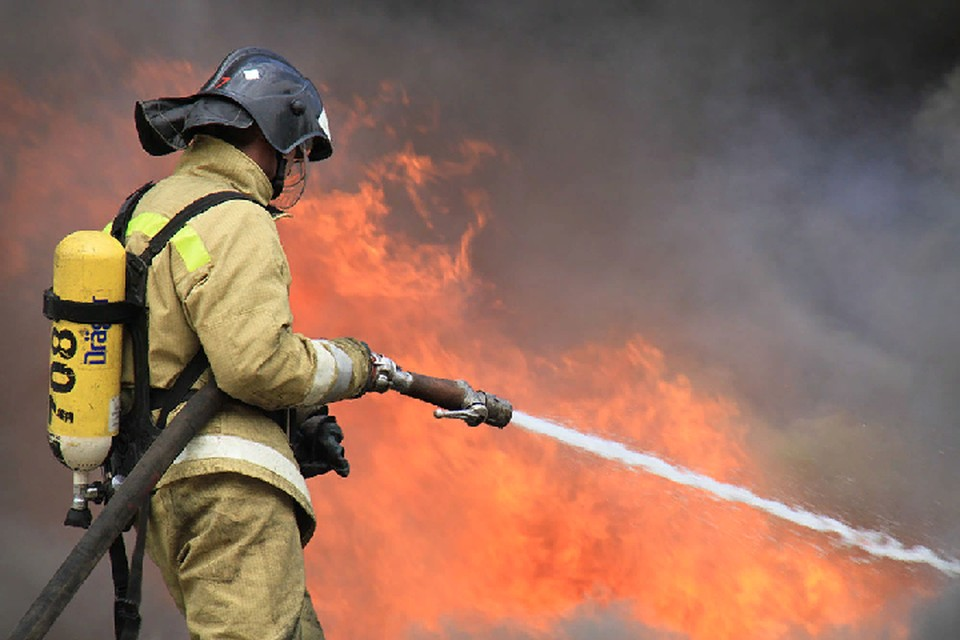 За сутки спасатели потушили 4 пожара в ДНР. Фото: МЧС ДНР