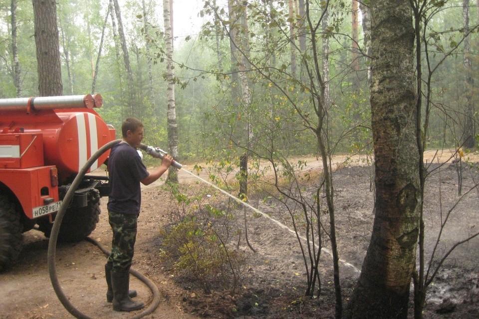 Из-за засухи в 2010 году в Рязанской области от пожаров пострадало 123 тысячи гектаров леса.