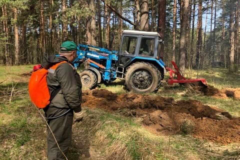 9 июля Ярославской области уже третий раз за год ввели противопожарный режим.