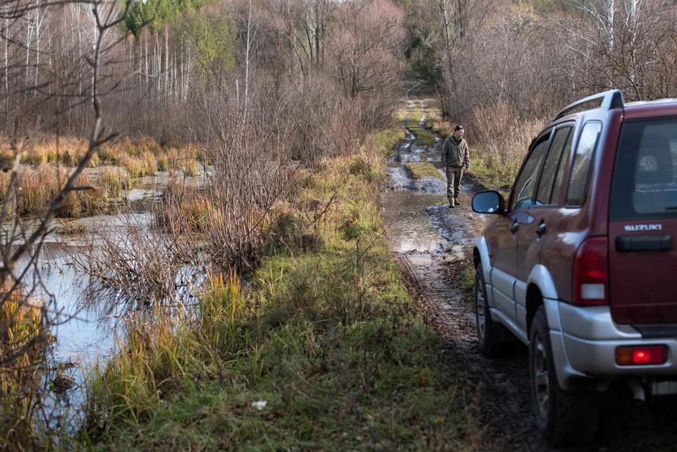В Тольятти добровольцы будут патрулировать леса