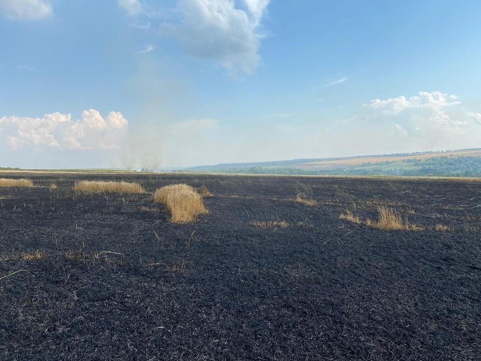 В Тараклийском районе загорелось поле с пшеницей. Фото: tuk.md