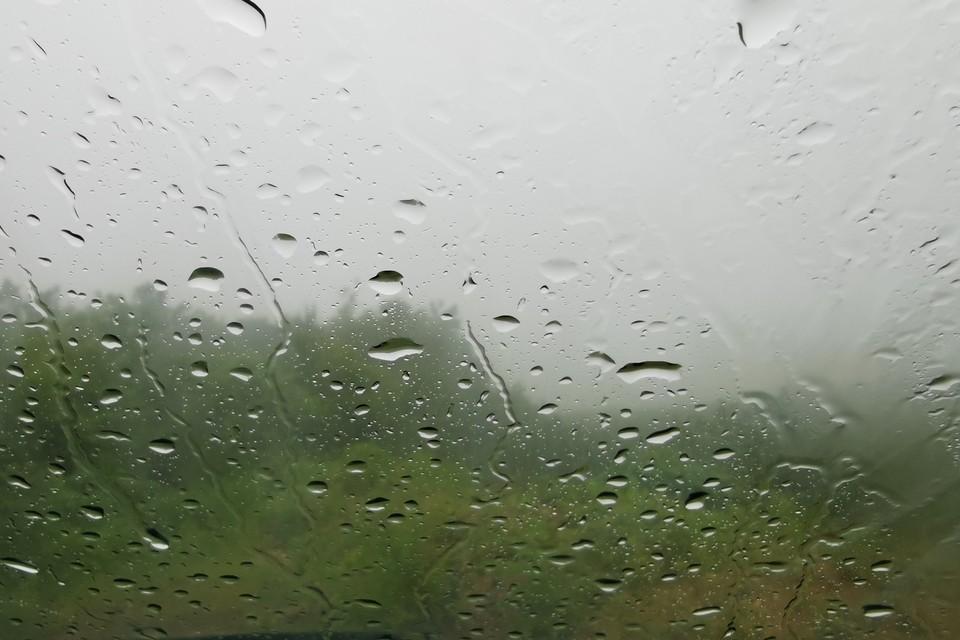 На предстоящей неделе циклон принесет в Сахалинскую область долгожданные дожди