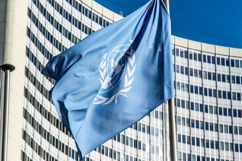 Верховный комиссар ООН отреагировала на действия силовиков Беларуси. Фото: pixabay