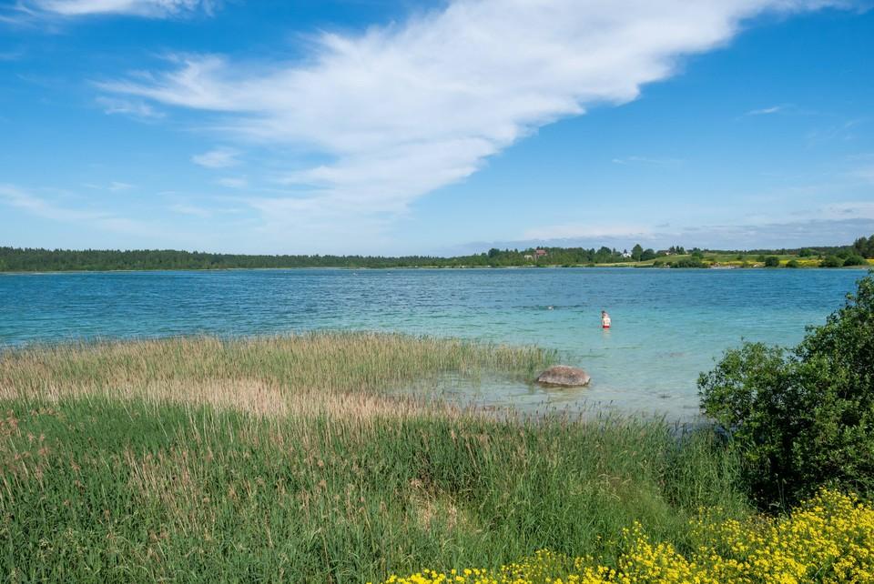 Полный список пляжей Ленинградской области, где можно купаться летом 2021 года