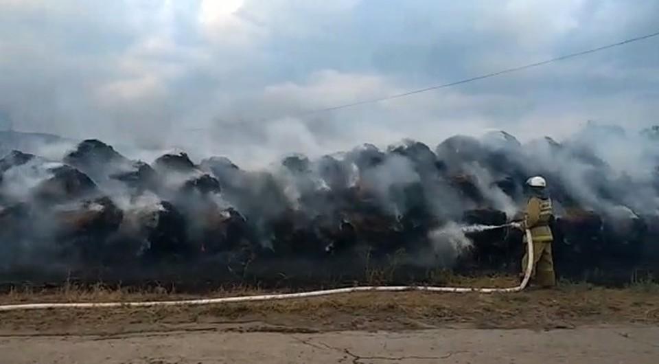 В Самарской области тушат крупный пожар на ферме. Фото - скриншот