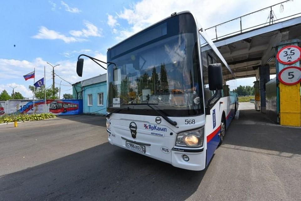 Остановки общественного транспорта на участке от площади Волкова до Богоявленской площади - не будет.