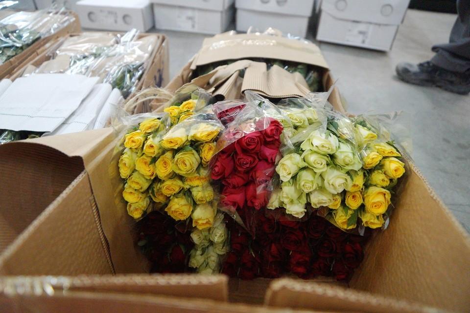 Партию роз, выращенных в Кении и привезенных из Словакии пришлось уничтожить