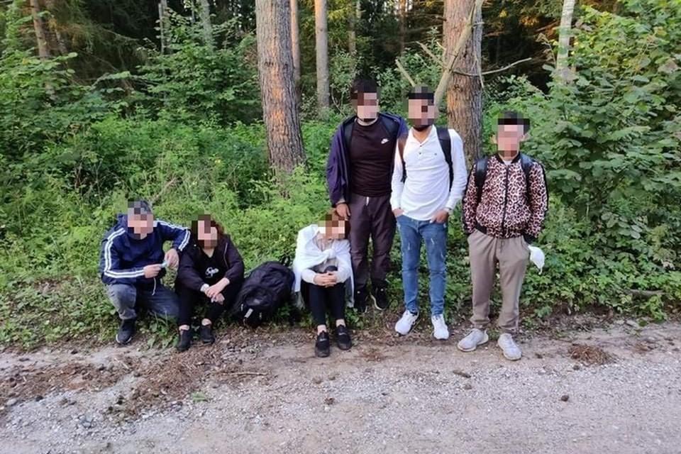В Литве за сутки задержали 110 мигрантов, которые незаконно пересекли границу со стороны Беларуси. Фото: pasienis.lt