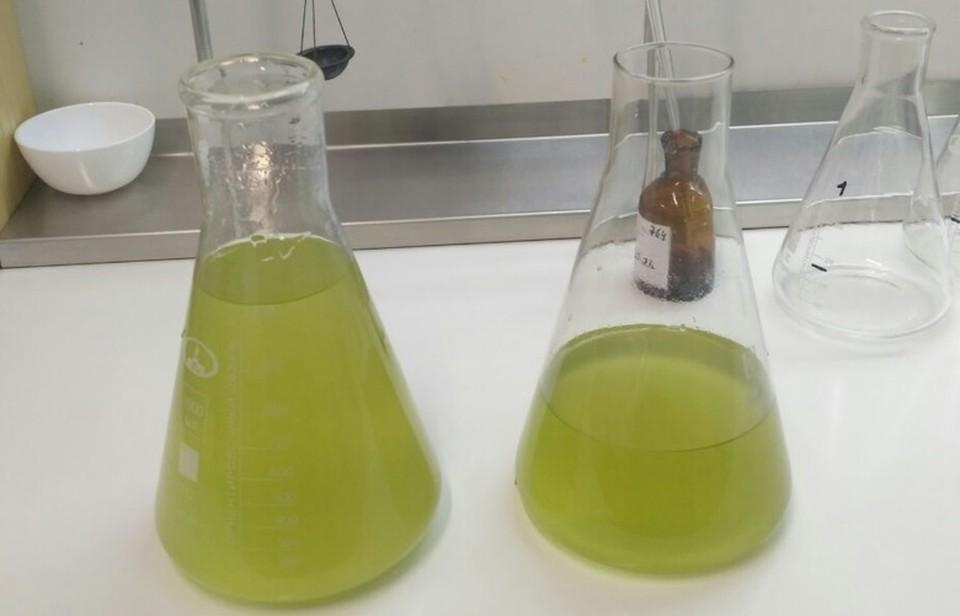 Тюменский водоканал назвал причину неприятного запаха воды.