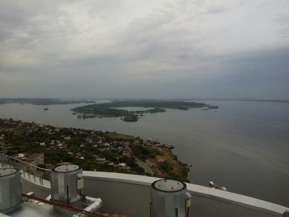 Волга начала цвести