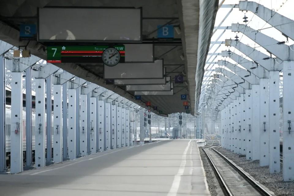 В Петербурге на Московском вокзале двое маленьких детей упали на рельсы.