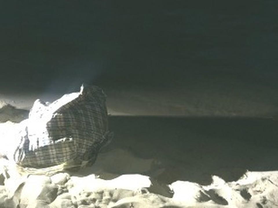 Сумку с телом женщины обнаружили на самарском пляже вечером 29 июля