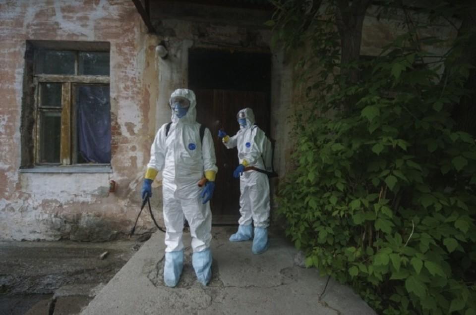 В Свердловской области процент тестирования на коронавирус составляет 400 человек на 100 тысяч населения