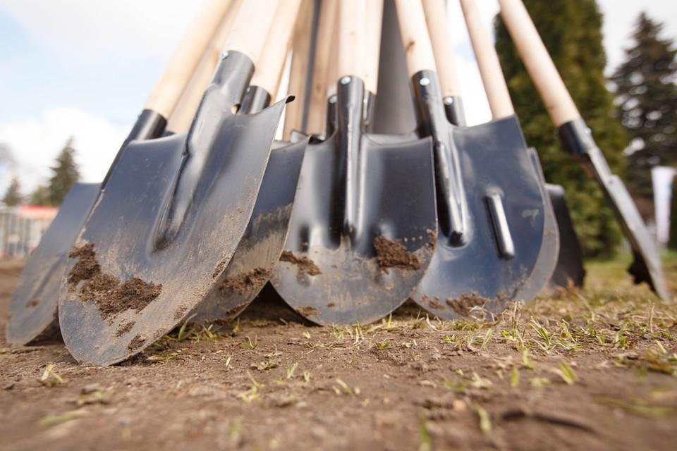 Комитет по благоустройству позвал петербуржцев на осеннюю посадку деревьев и кустарников