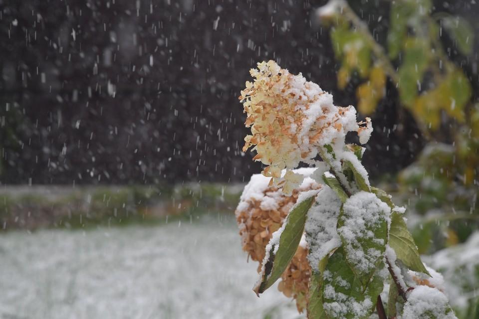 метеорологи уточнили, ждать ли в этом сентябре снега.