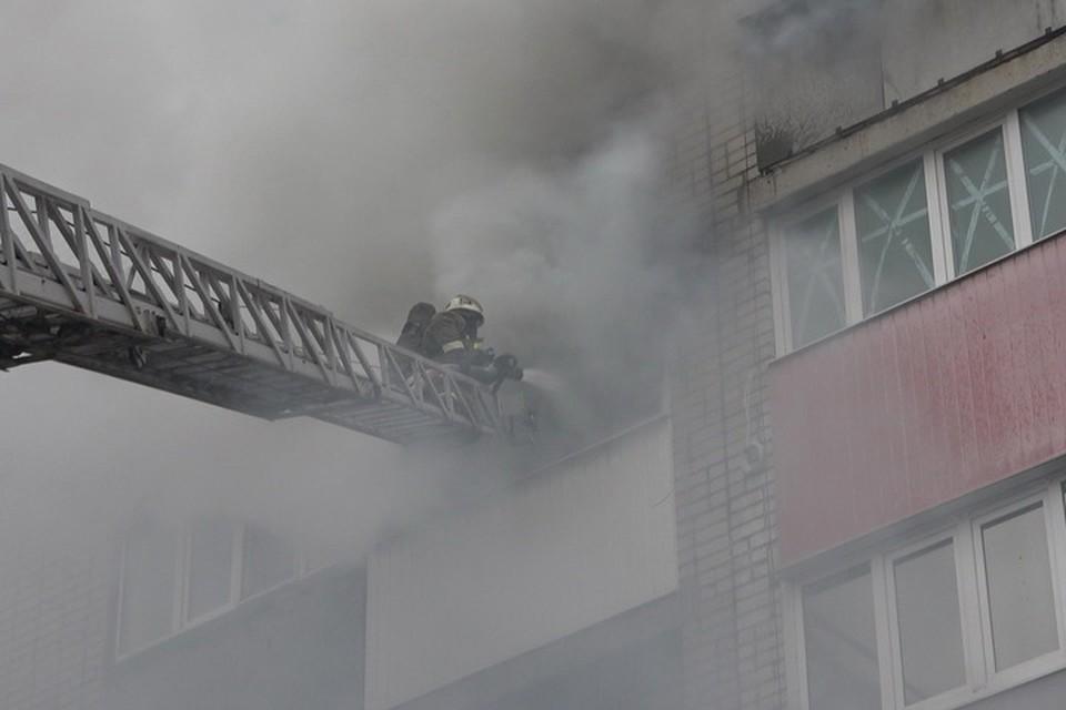 Пожарные сработали оперативно. Фото: МЧС ЛНР