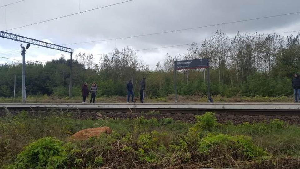 Пассажирский поезд насмерть сбил под Рязанью 39-летнего инвалида. Фото: администрация Рязанского района.