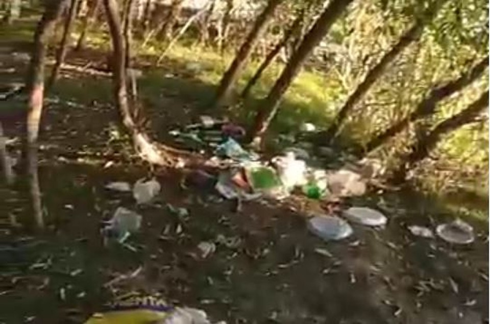 Отдыхающие оставили после себя горы мусора на левом берегу Иртыша. Фото: скриншот видео