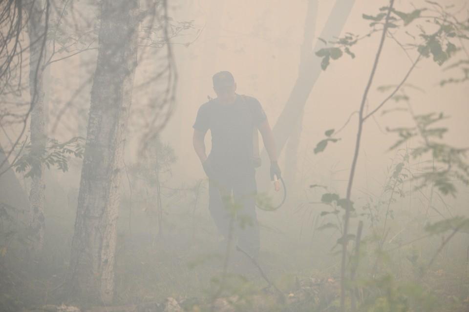К огненным ЧП подготовились в Ростовской области после сильных природных пожаров 2020 года
