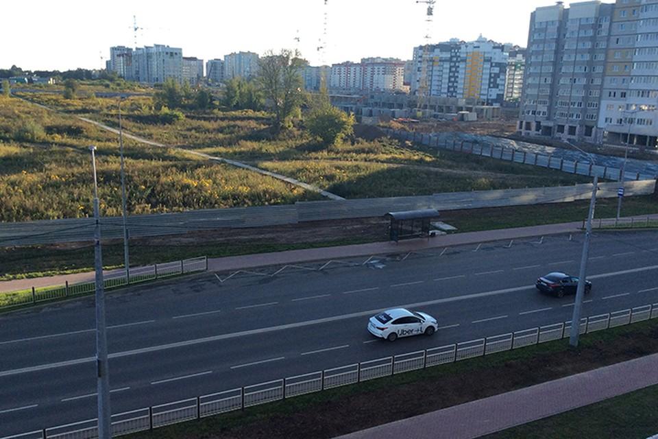 Земельный участок выходит на улицу Советскую.