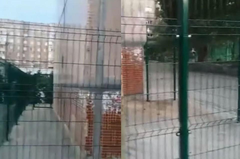 """В Новосибирске жительница дома на улице Белинского №6\1 установила на углу многоэтажки двухметровый забор. Фото: Кадр из видео """"Вести-Новосибирск"""""""